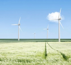 Wind turbines on farm via Shutterstock